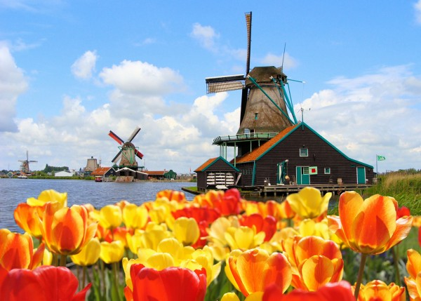 Мельница в пригороде Амстердама