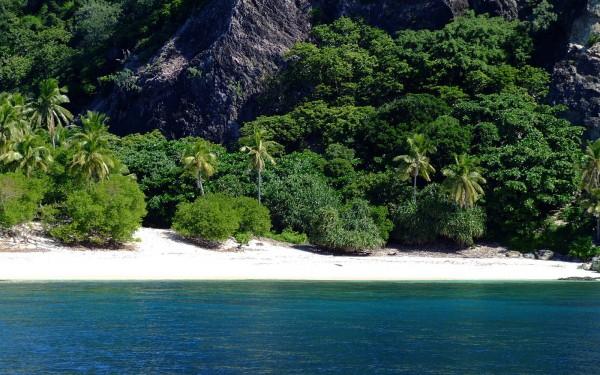 Острова Фиджи покрыты тропическими лесами