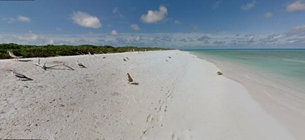 Остров Лисянский (фото: Google Maps)