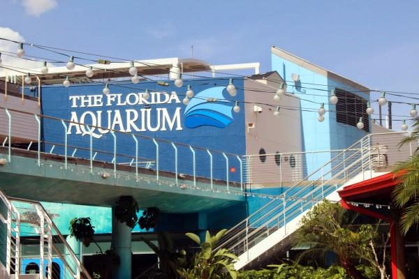 Флоридский Аквариум